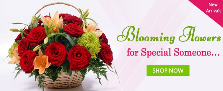 Blooming Flowers for special someone…