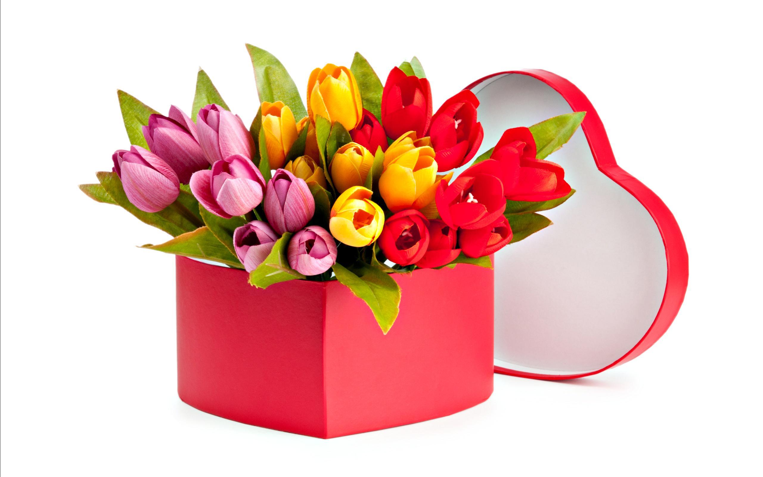 Tulips Bouquet | Damas Flowers