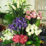 Multi-floral Arrangement
