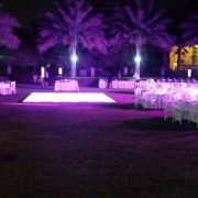 ecstatic event decor